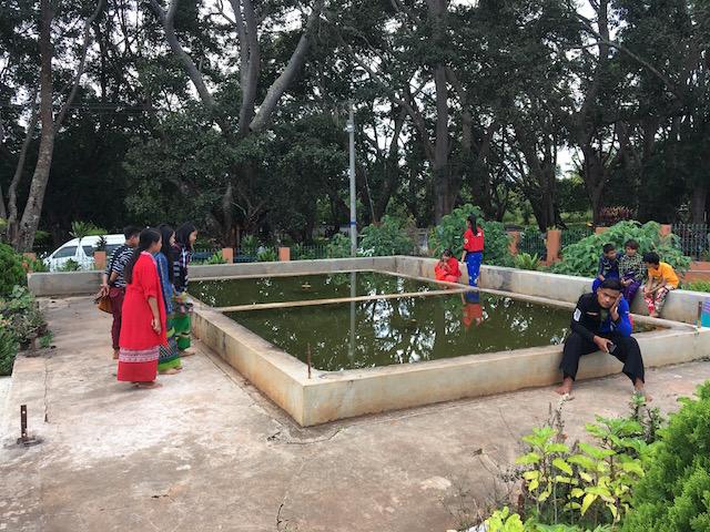 カックー遺跡内の池