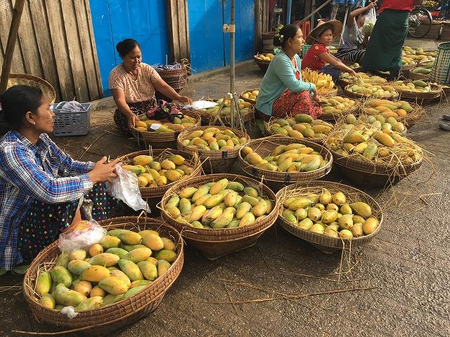 投げ売りされているマンゴー