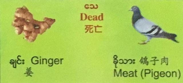ショウガと鳩肉