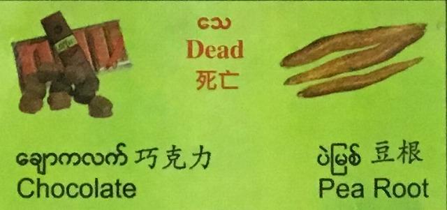 チョコレートとえんどう豆の根
