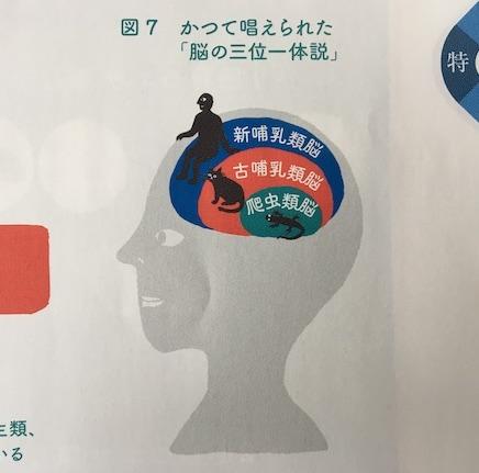 脳の三位一体説